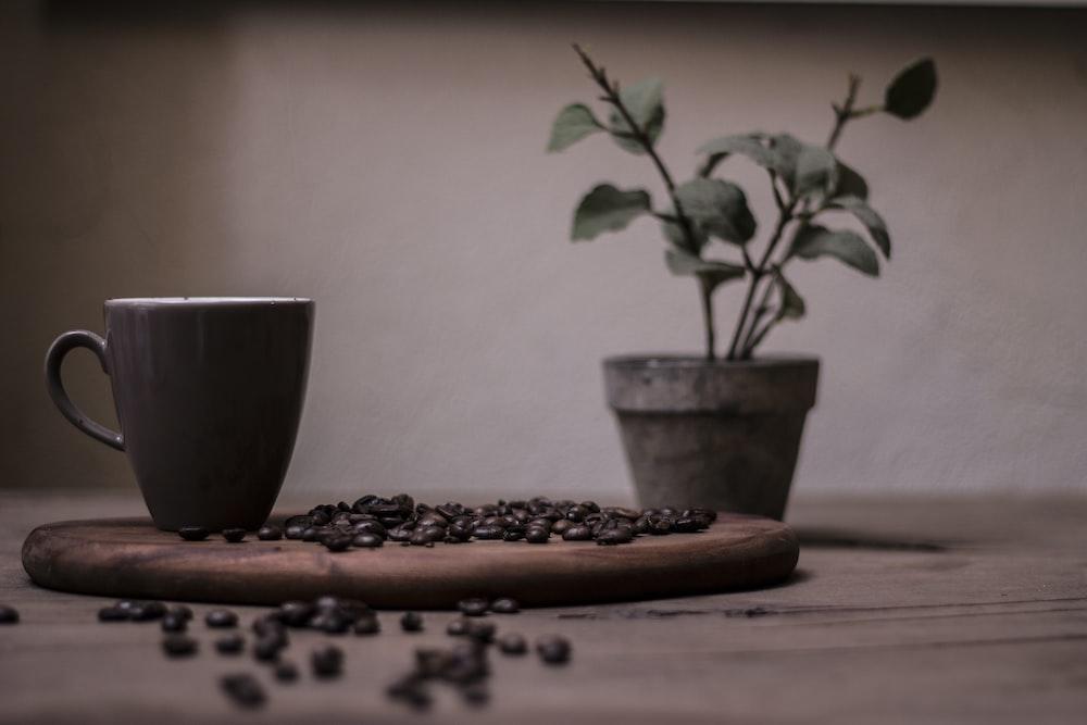 coffee beans on brown pan
