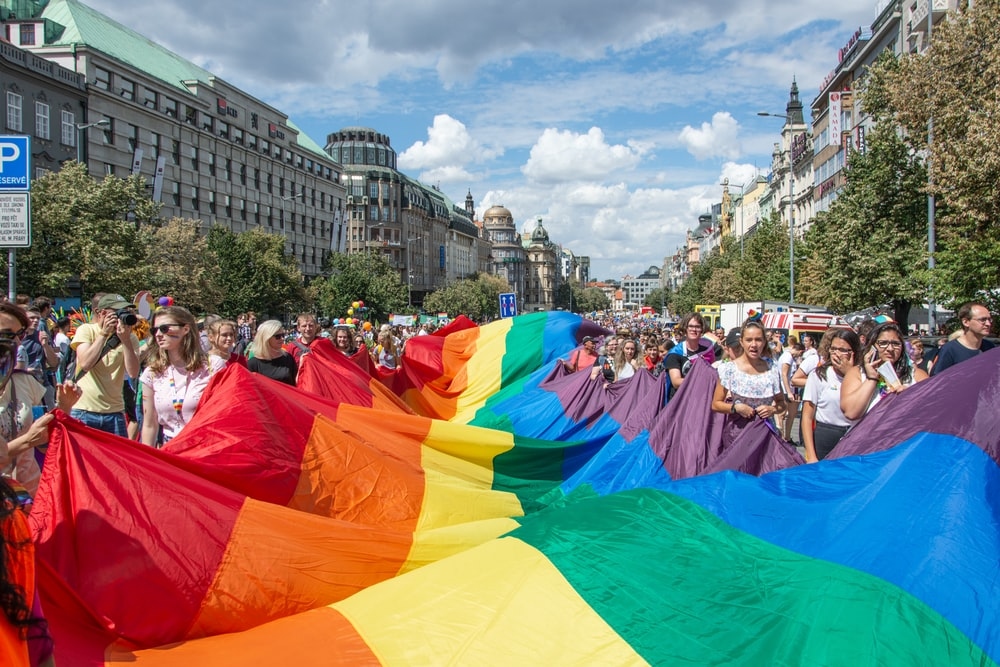 group of people holding Pride Flag during daytime