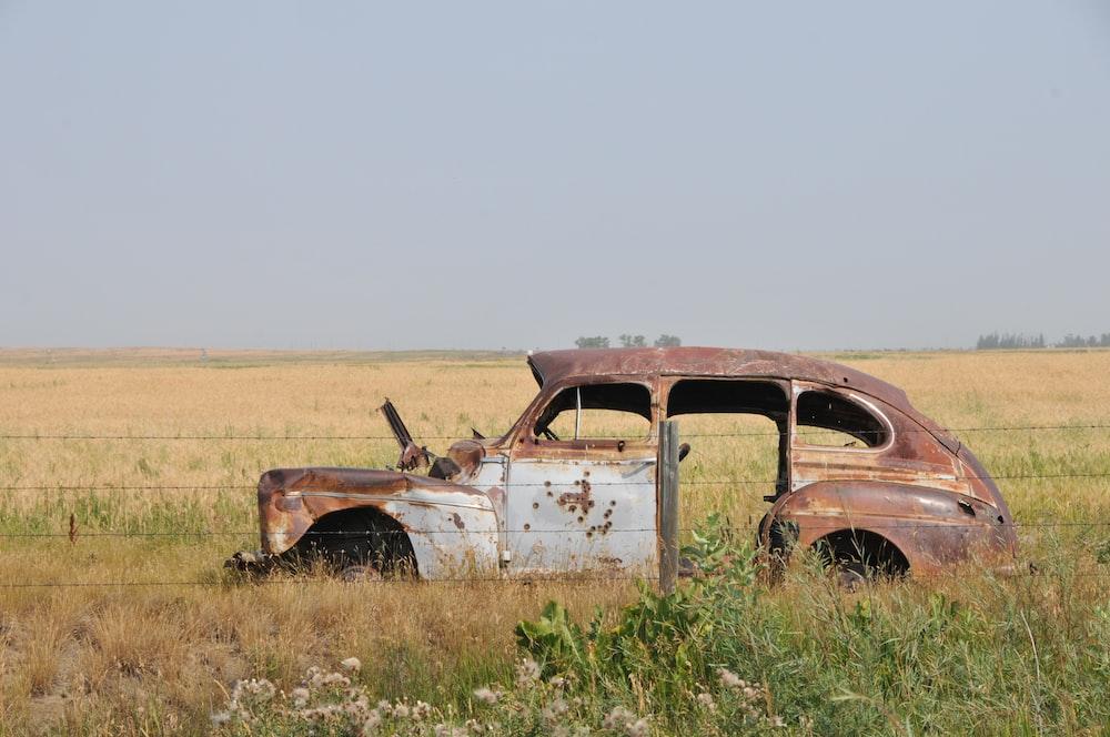 brown car on grass field