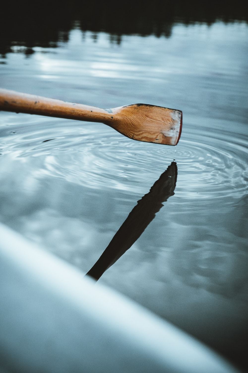 brown boat paddle touching on body of water