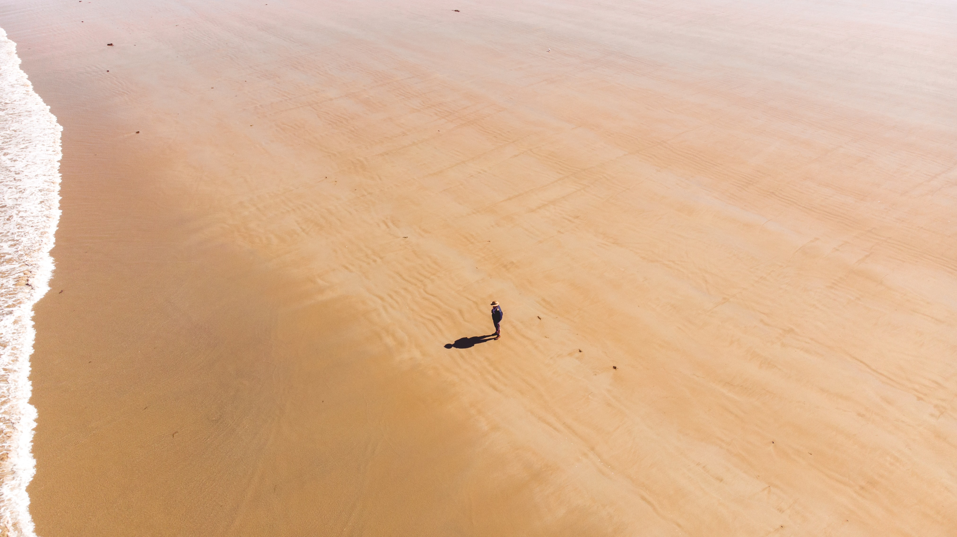 person waling on brown sand beach during daytime