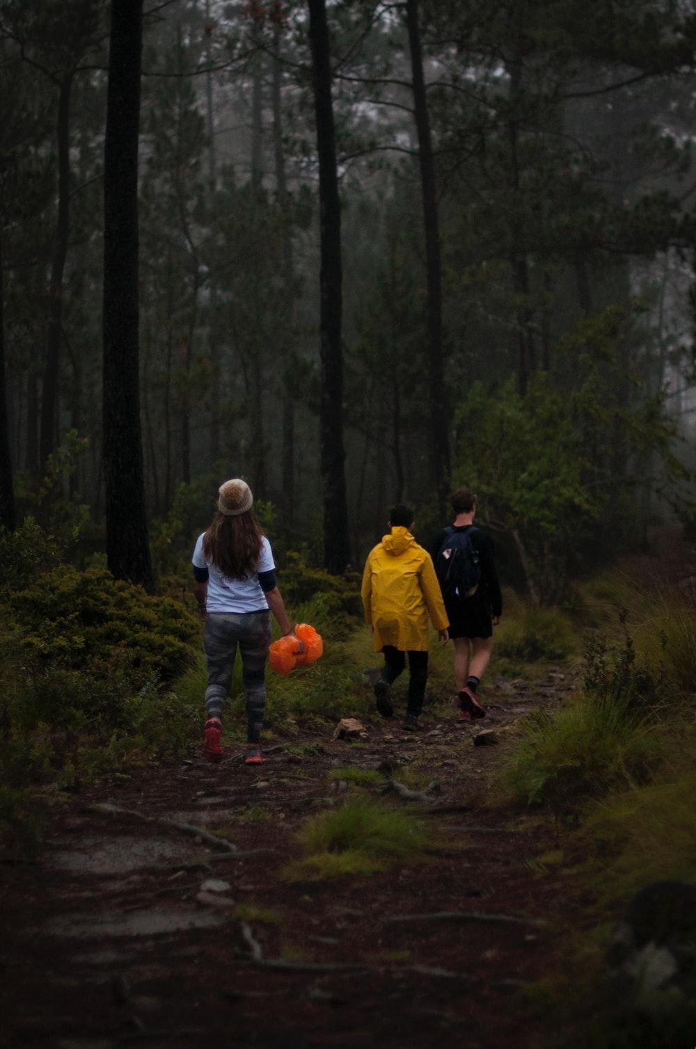 three people walking on footpath near trees