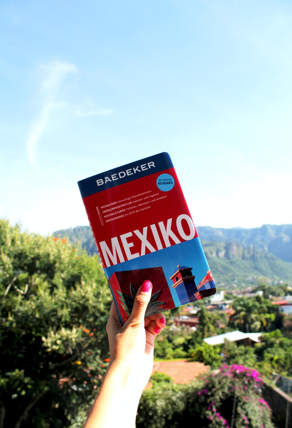 person holding up Mexiko book
