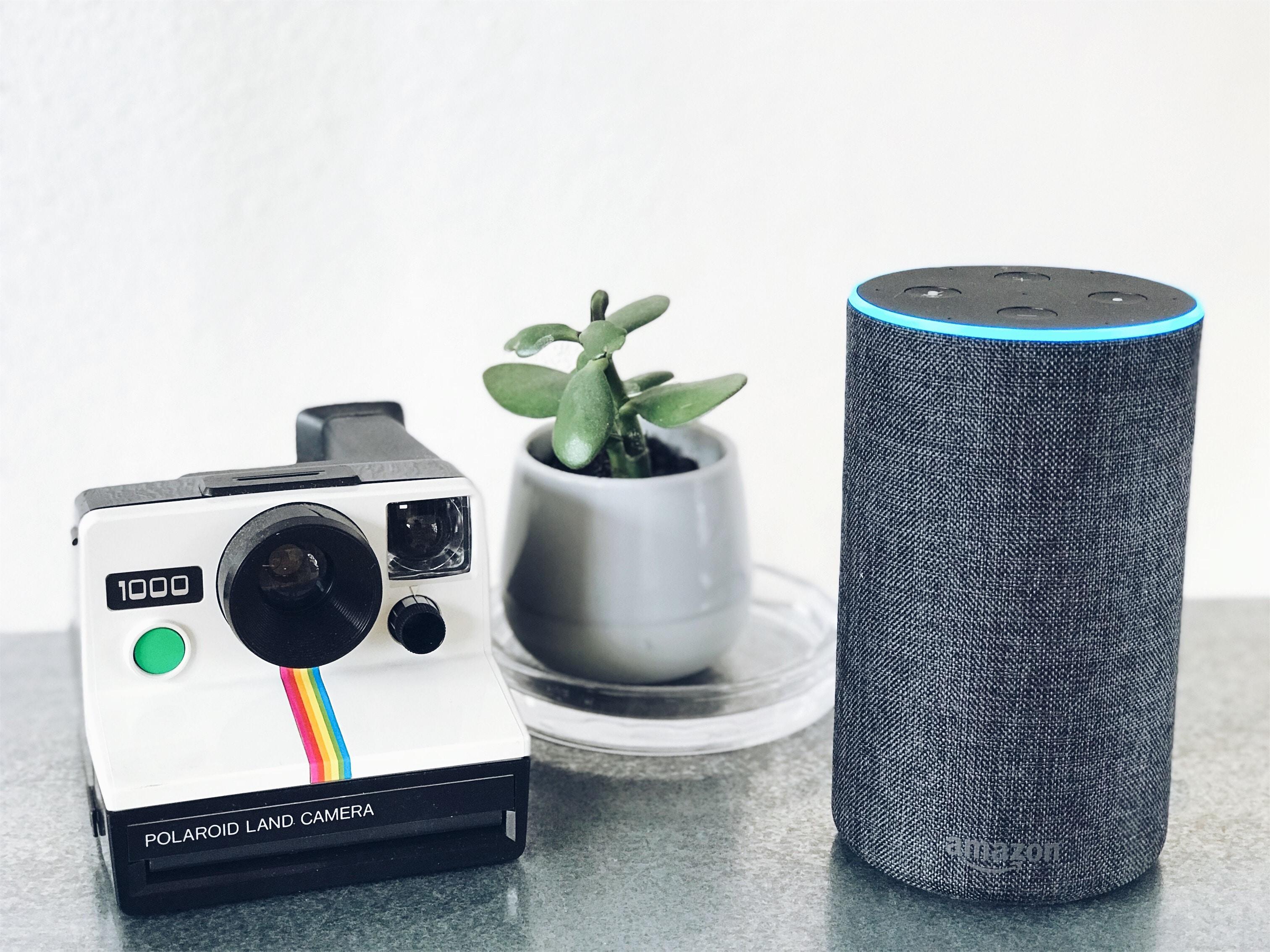 white and black Polaroid land camera and gray Amazon speaker