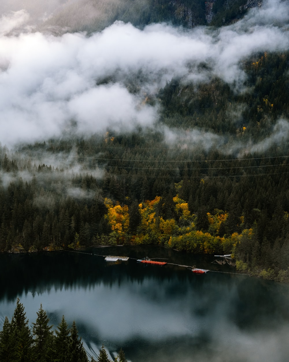 aerial photography of lake surrounded with trees during daytime