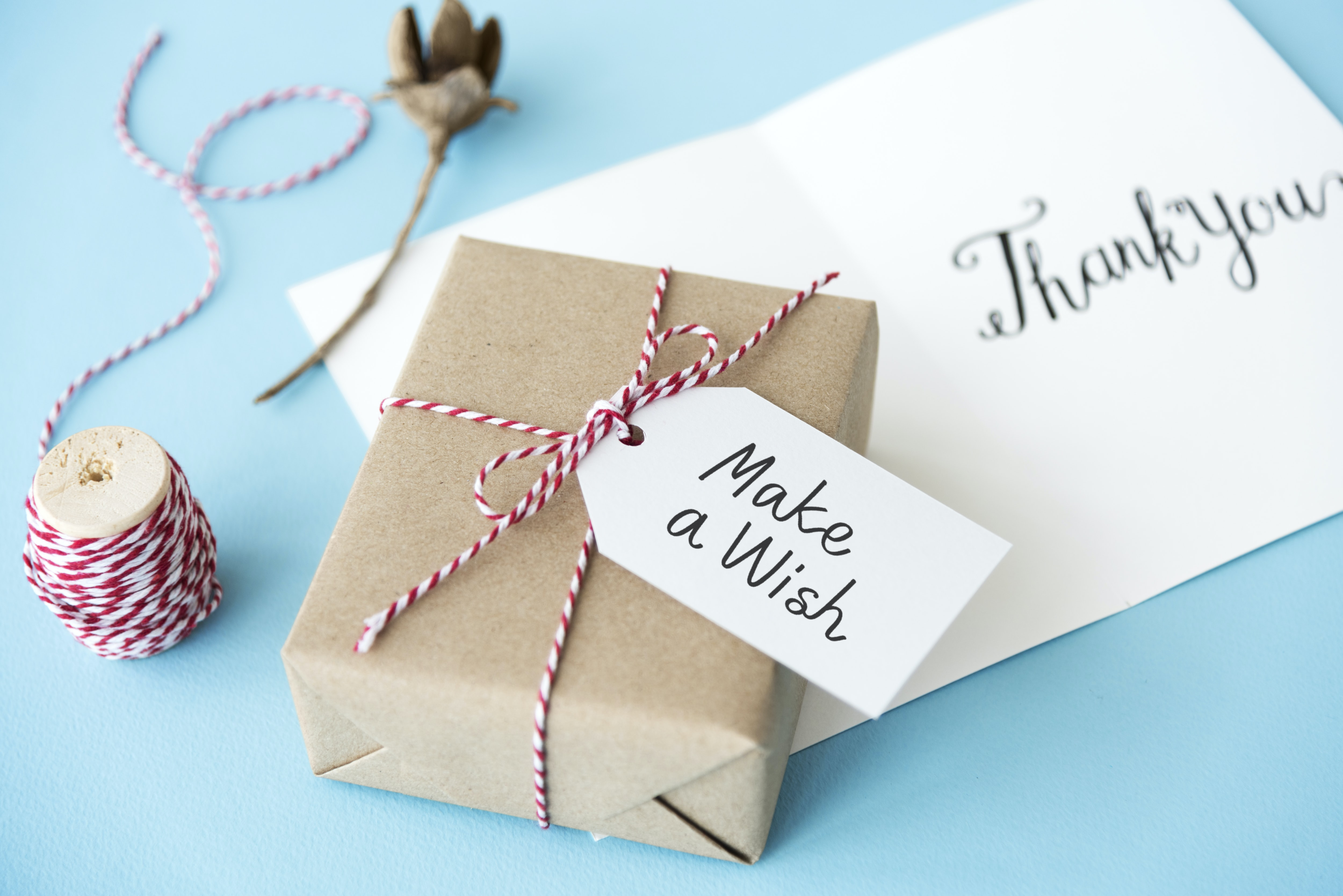 selective focus photo of gift with make a wish print ta