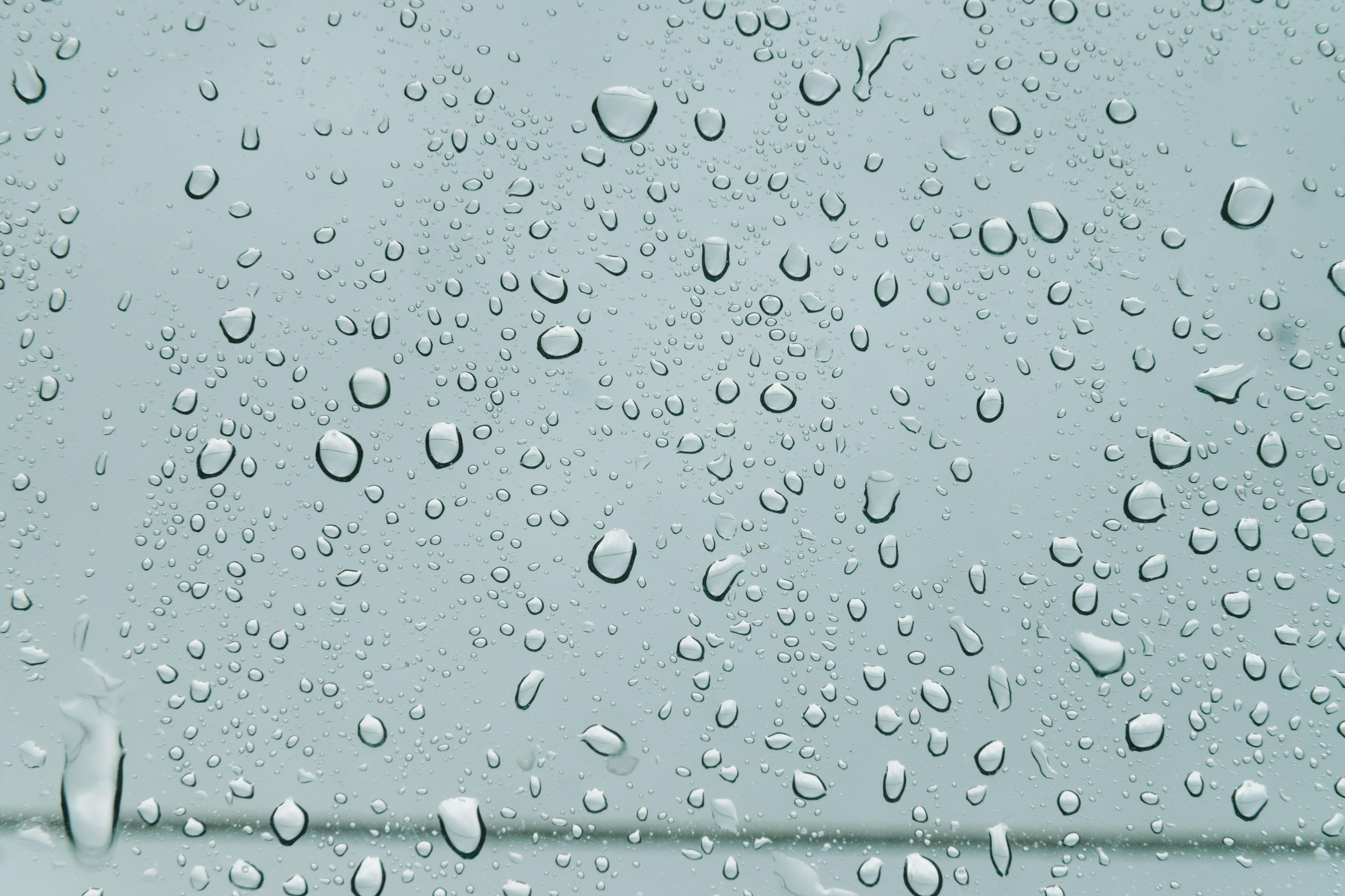 macro shot of water drops