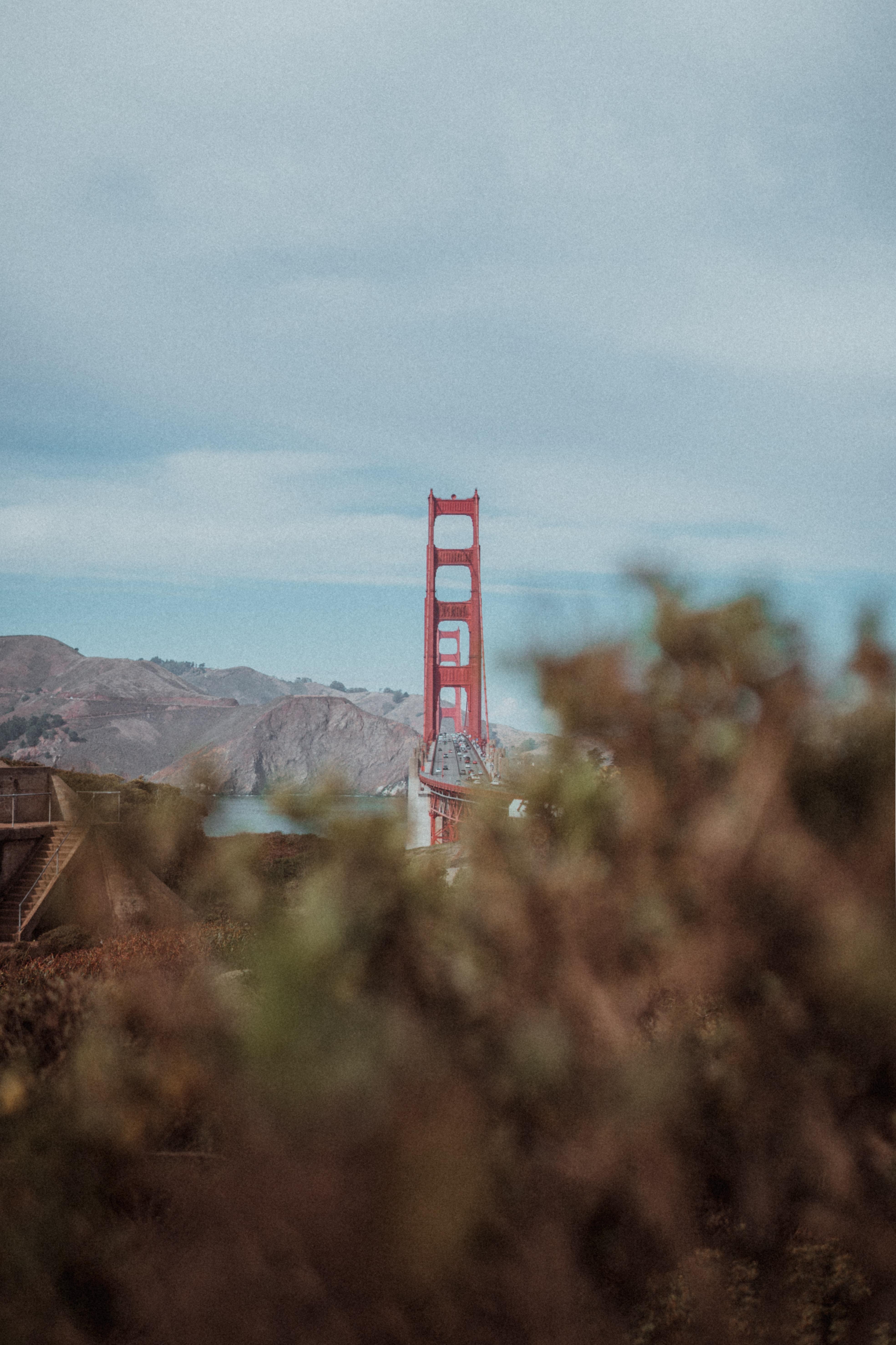 red and white bridge during daytime