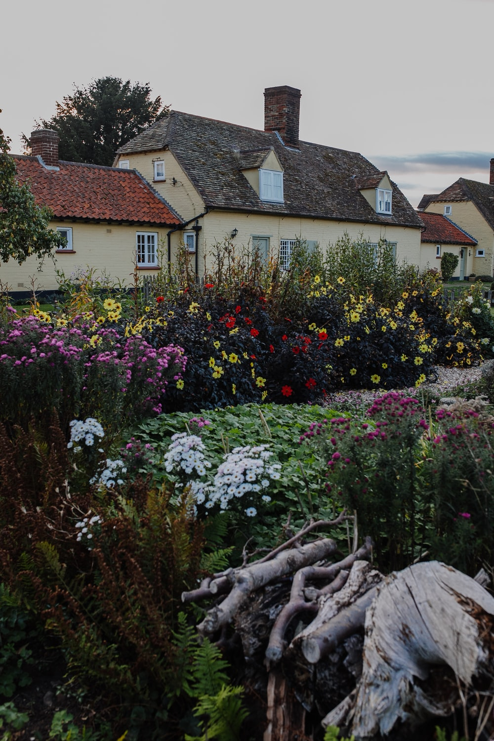 houses and flower garden during daytime