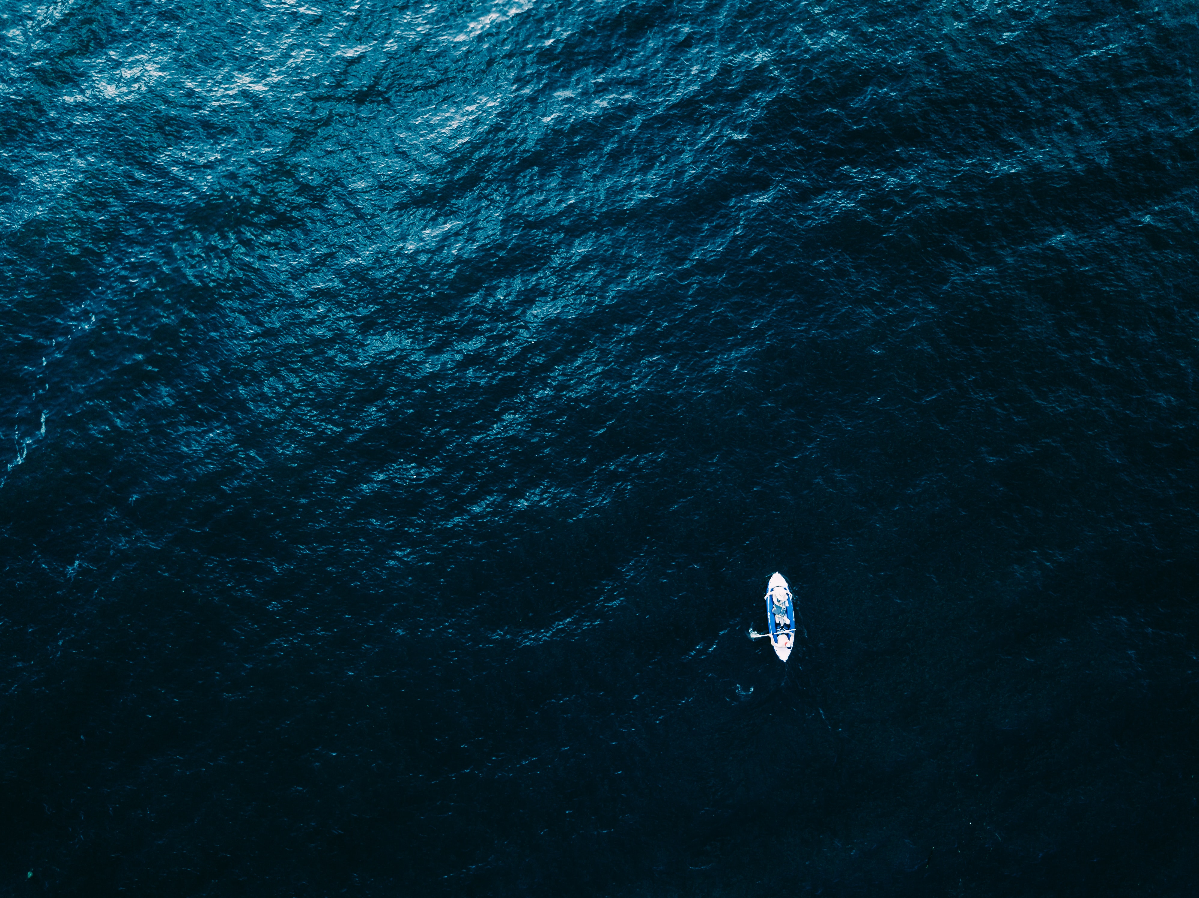 aerial photography of white boat on body of water
