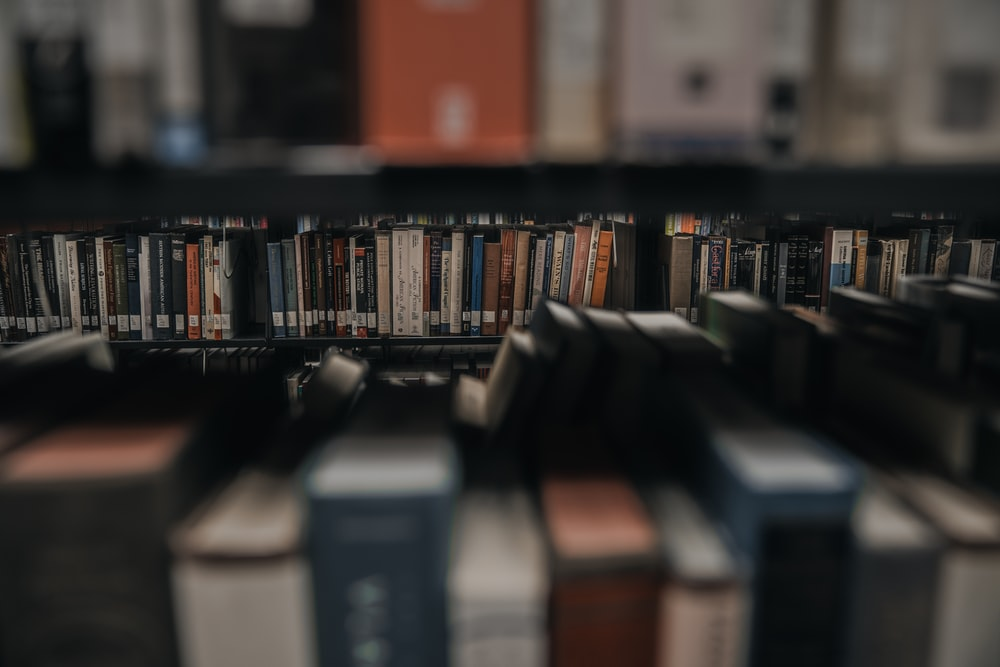 assorted-title books on shelves
