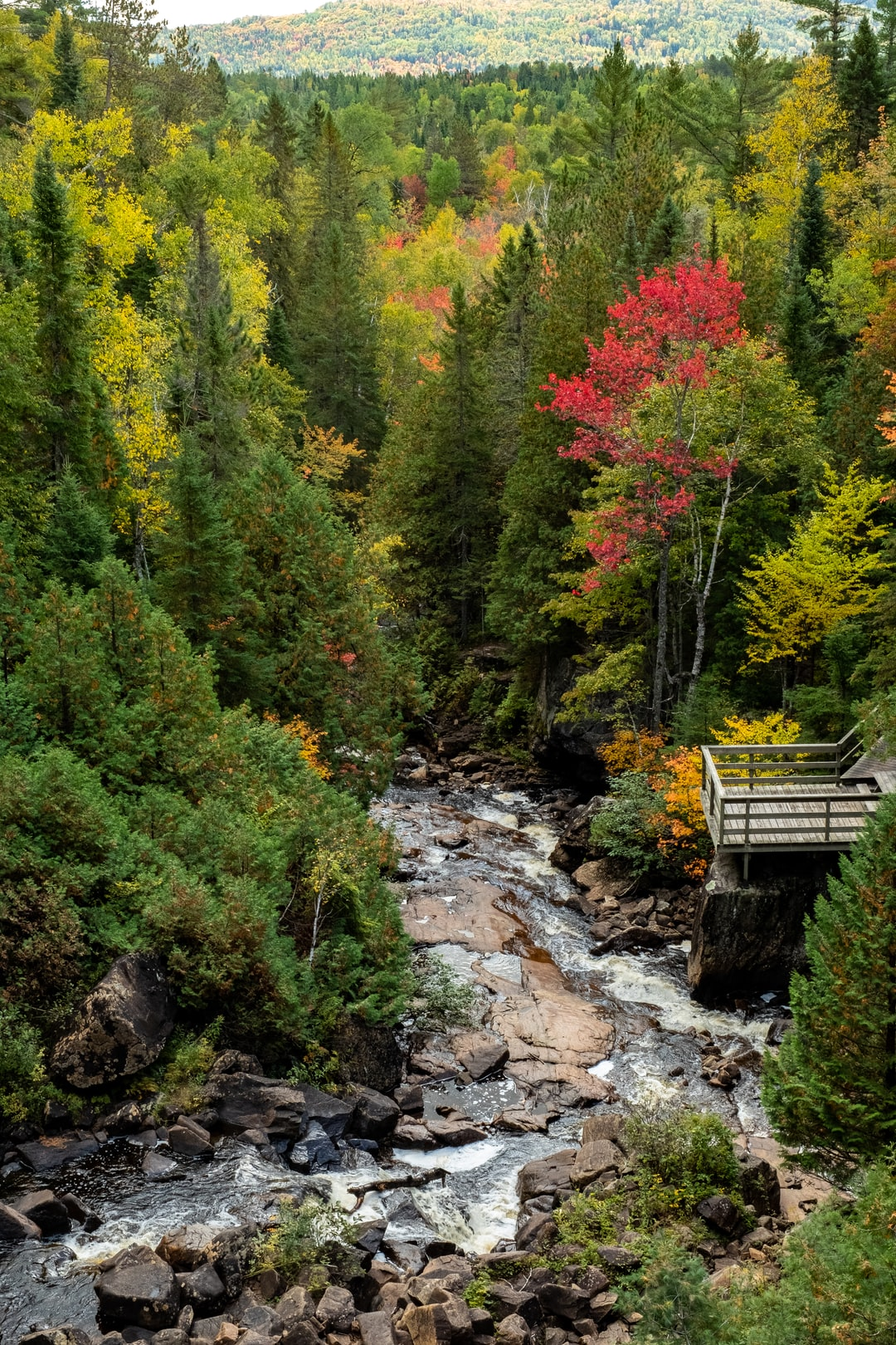 We were on our way to the Chute-à-Bull, the colors were beautiful at that time of the year. Some trees were already red. This is a glimpse of what a Canadian fall looks like.