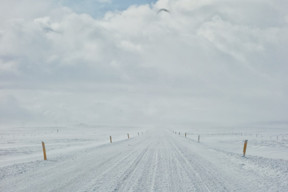 field cover with snow under white skies