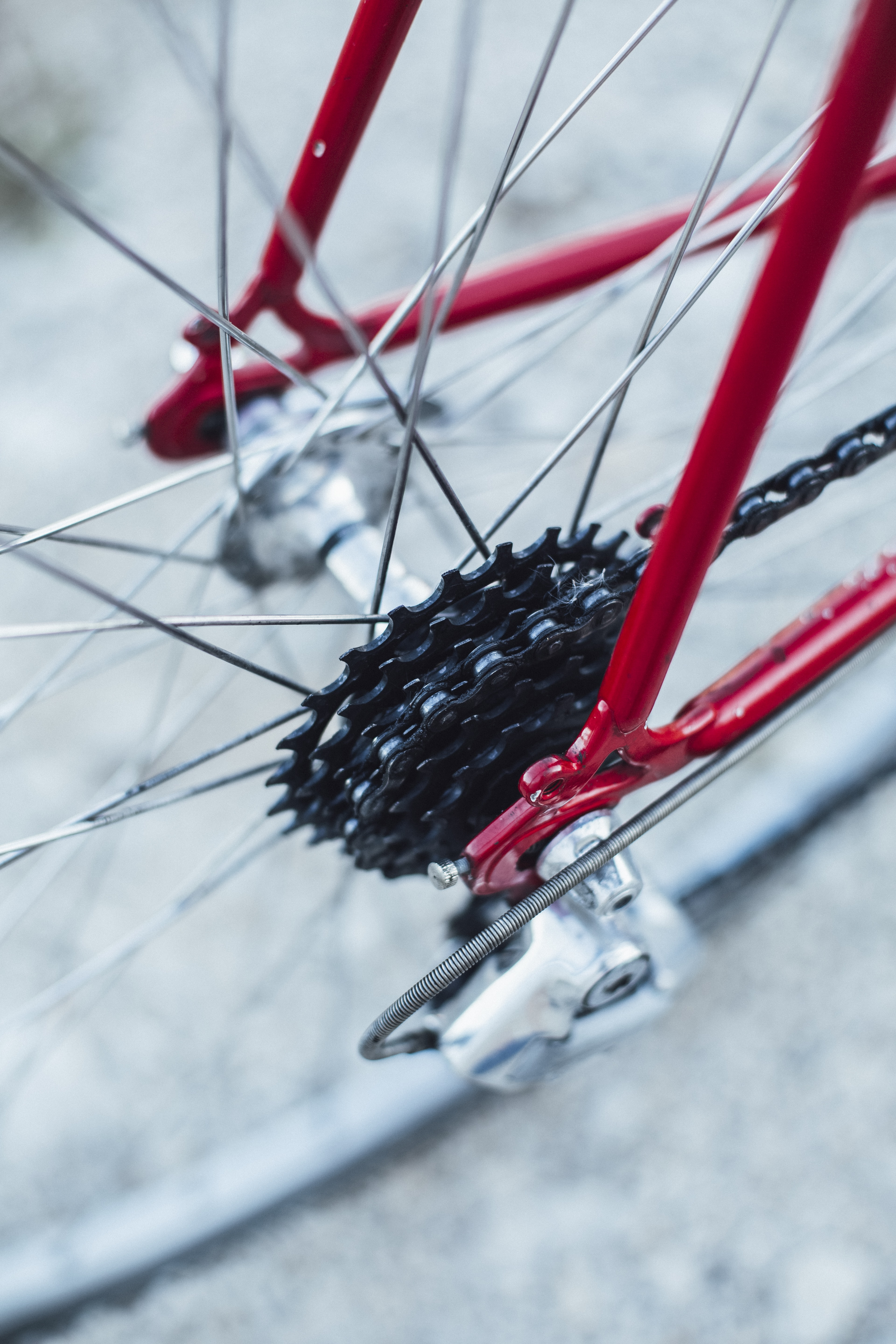 selective focus photography of bicycle wheel and tire