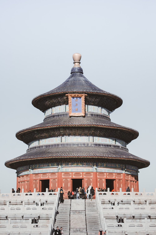 gray and brown pagoda