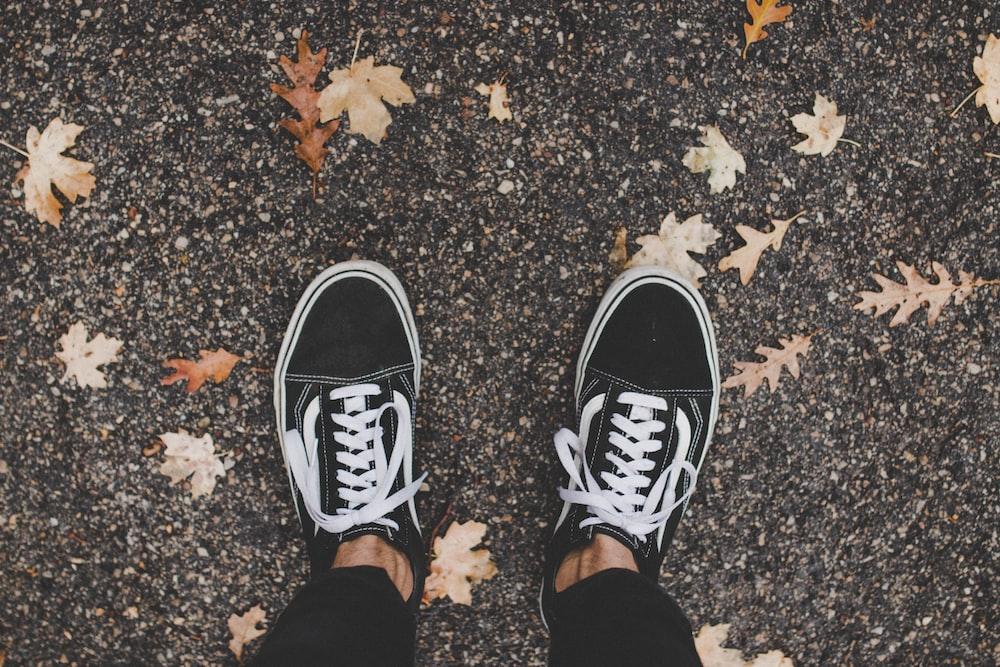 person wearing Vans Old Skool shoes