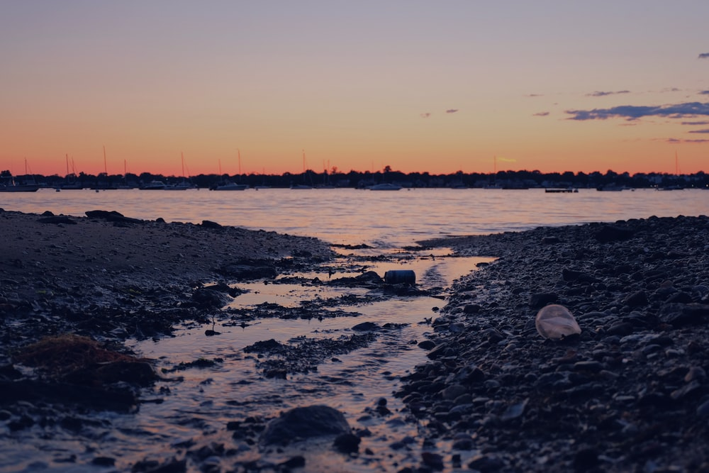 silhouette photography of shore during sunset