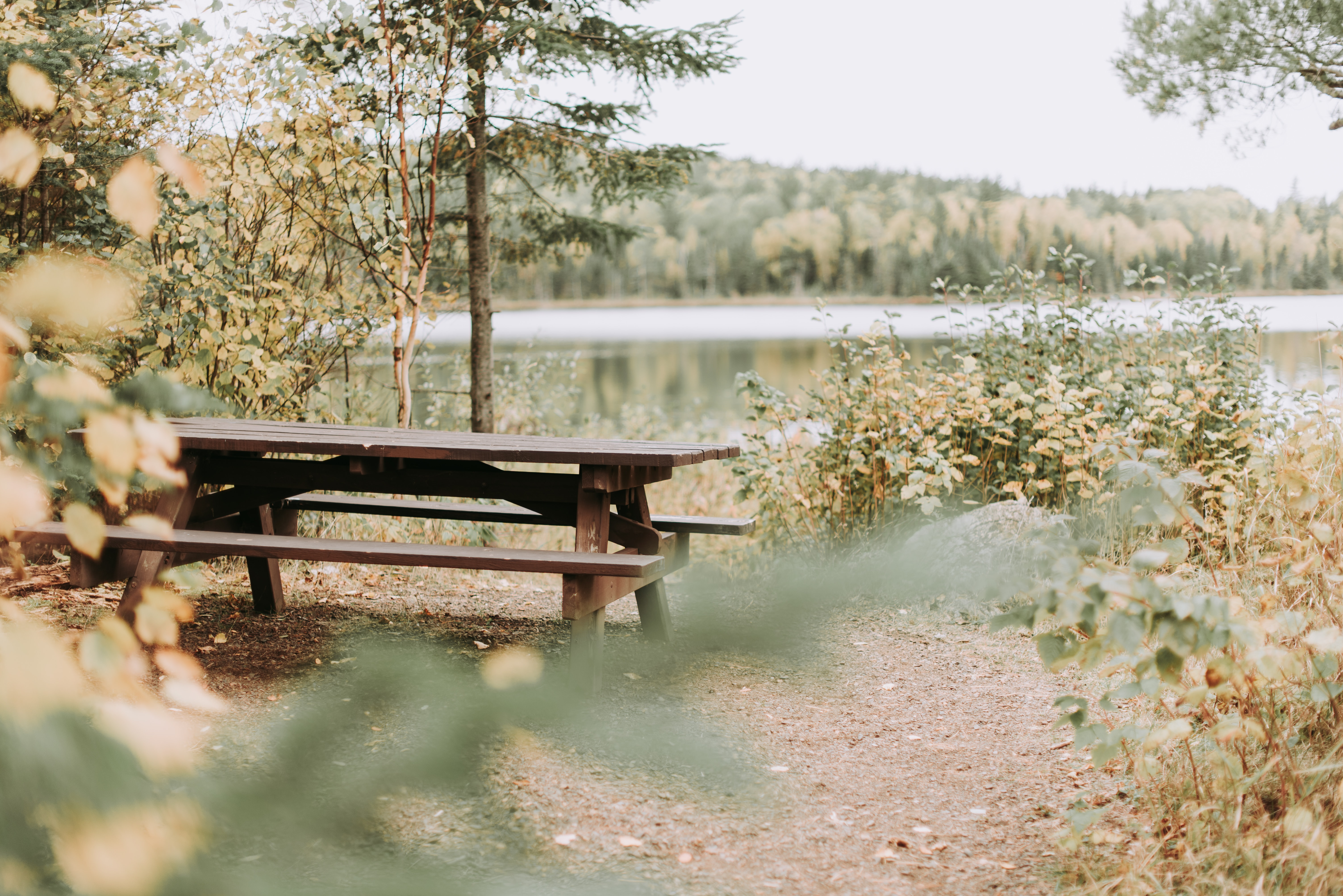 picnic table near body of water