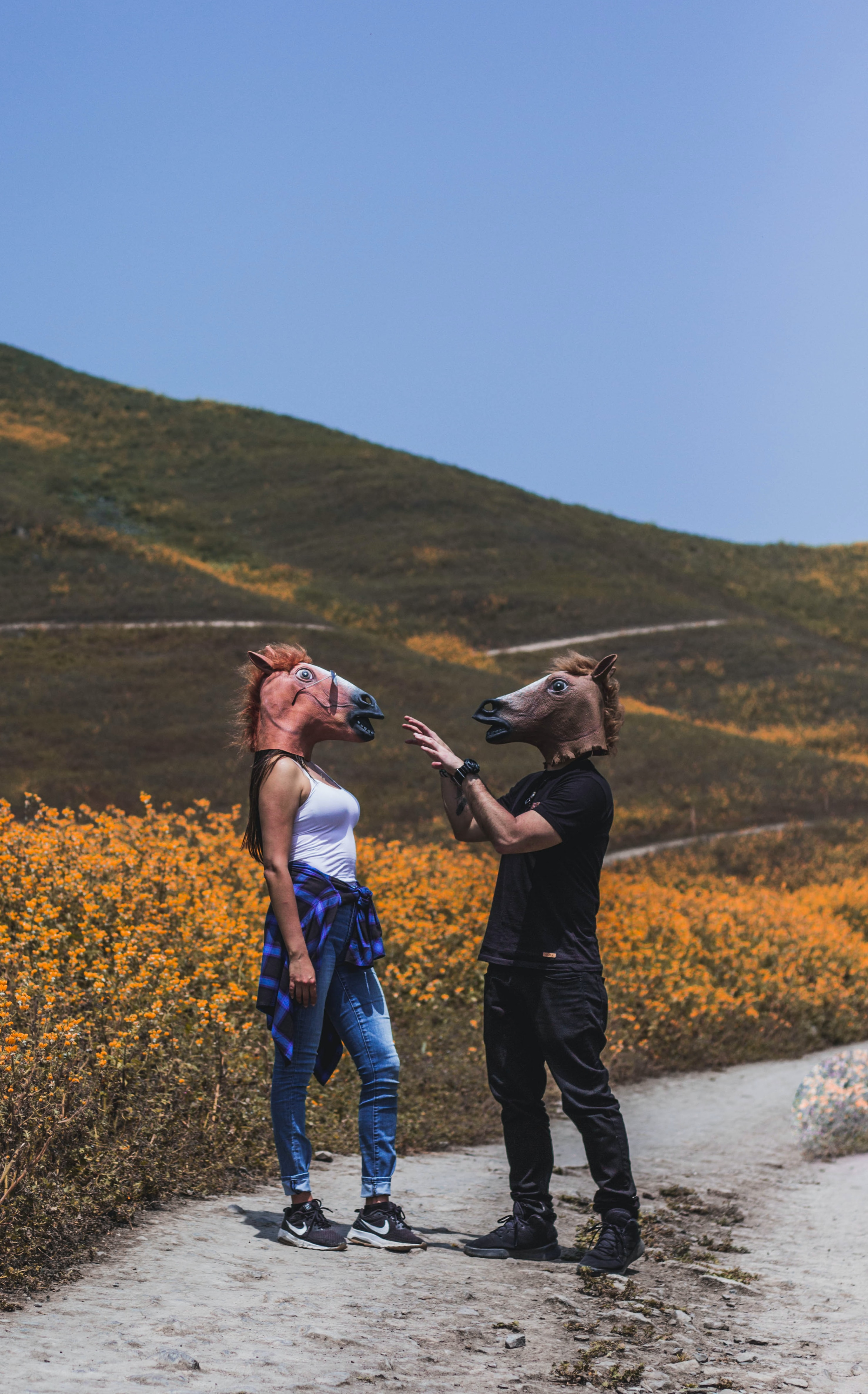 man and woman facing each other while wearing horse masks near flower field during daytime