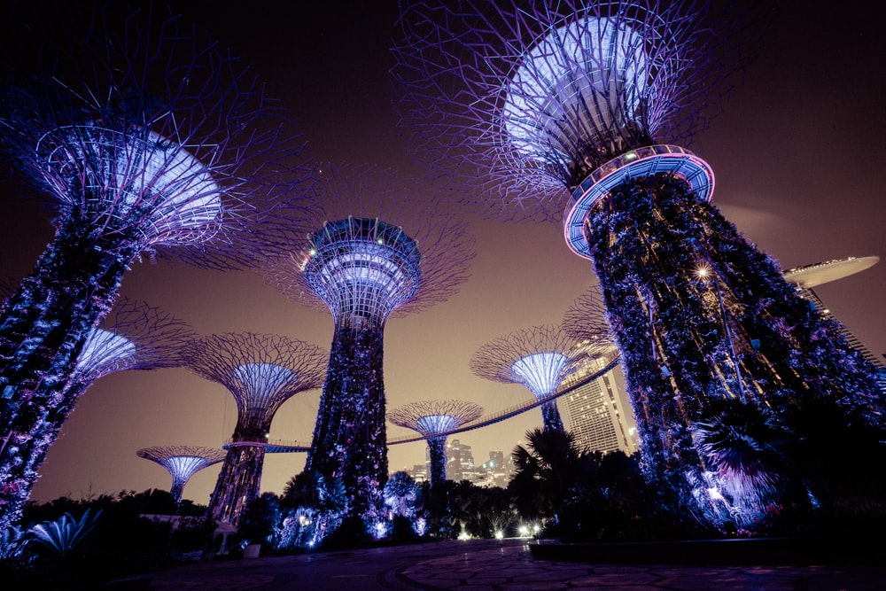 Singapore Forest Marine Bay