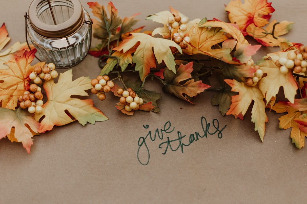 Fall Season 10 Best Free Season Fall Autumn And Woodland