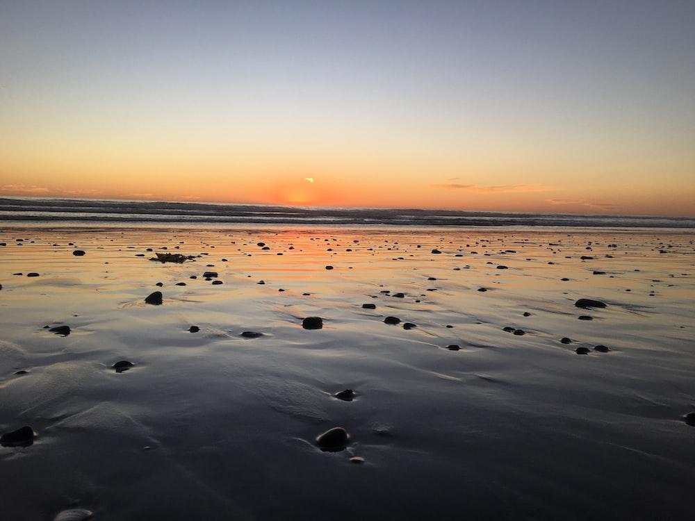seashores during golden hour view