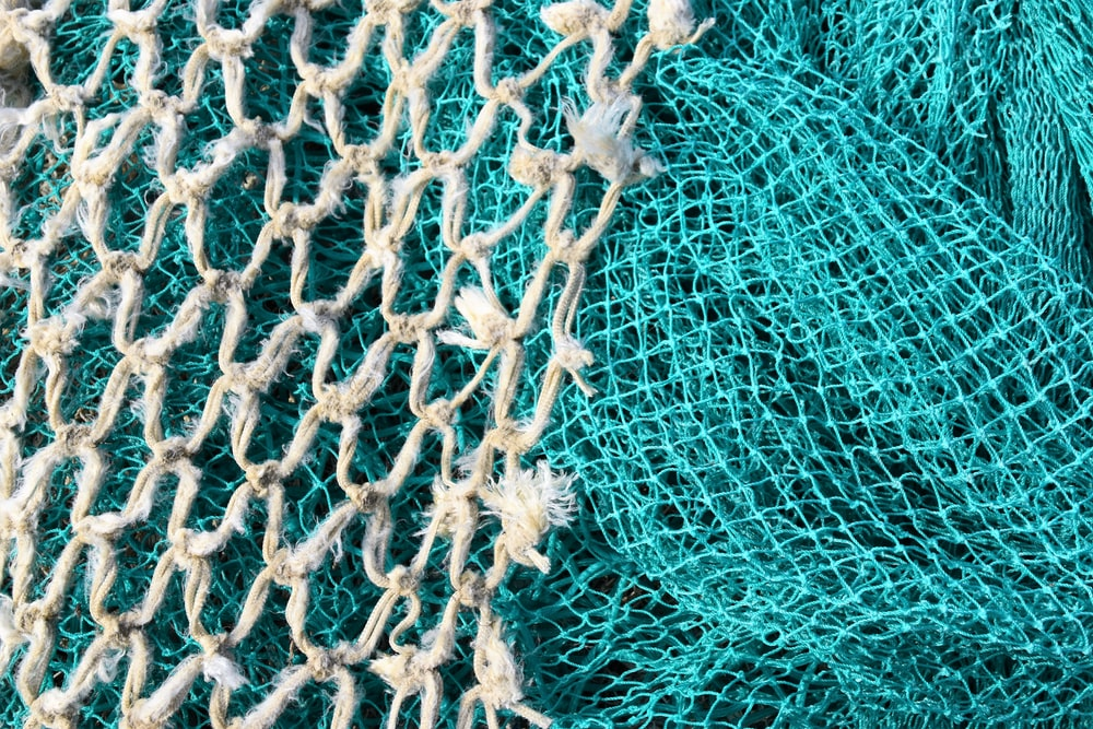 white and blue net