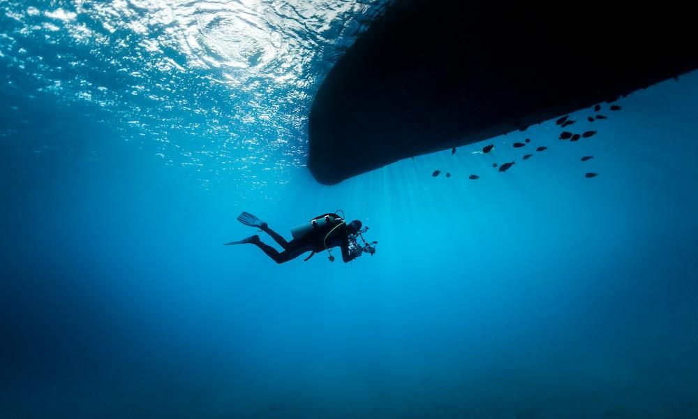 diver on sea