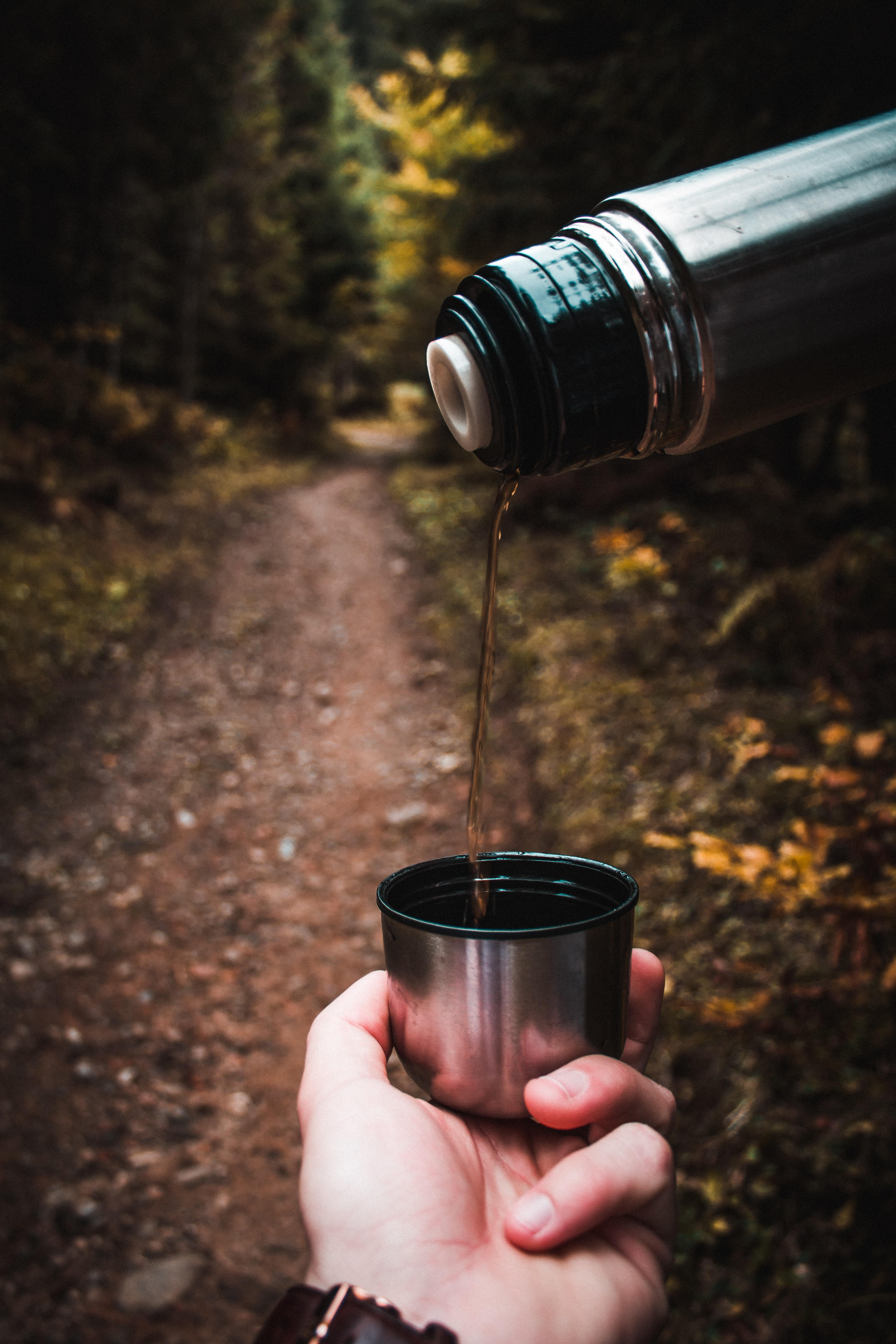 person holding silver vacuum flask