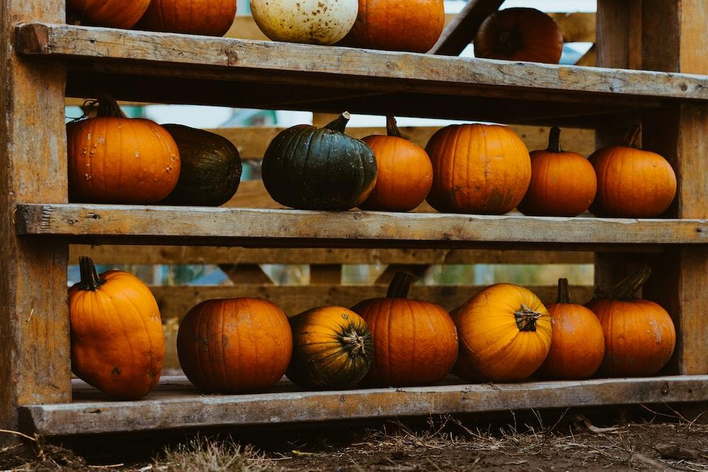 pumpkins on rack