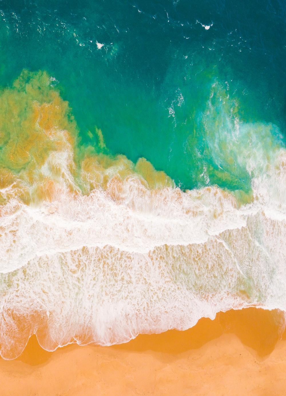 birds eye view of beach shore