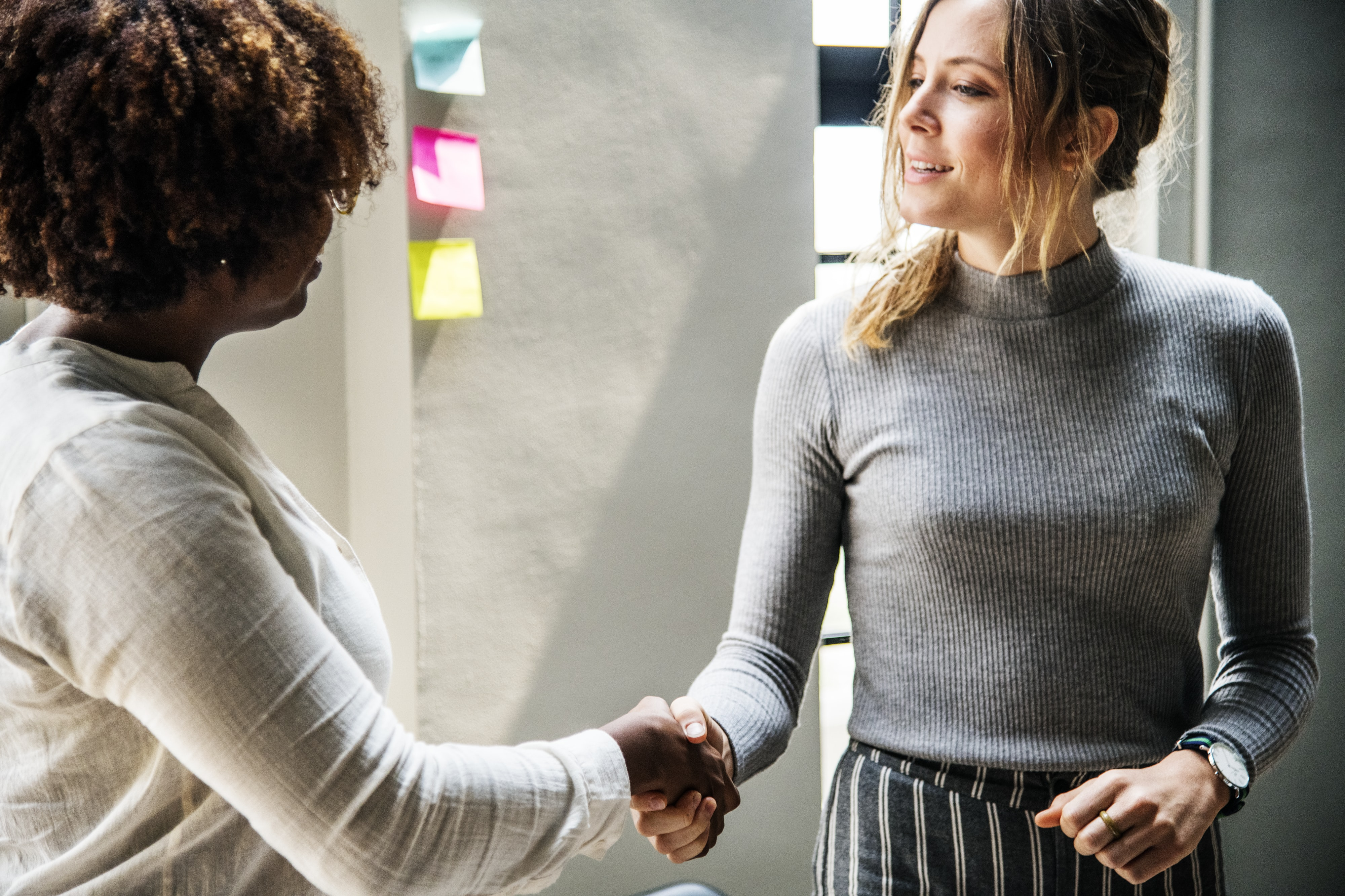 woman shaking hands with another woman
