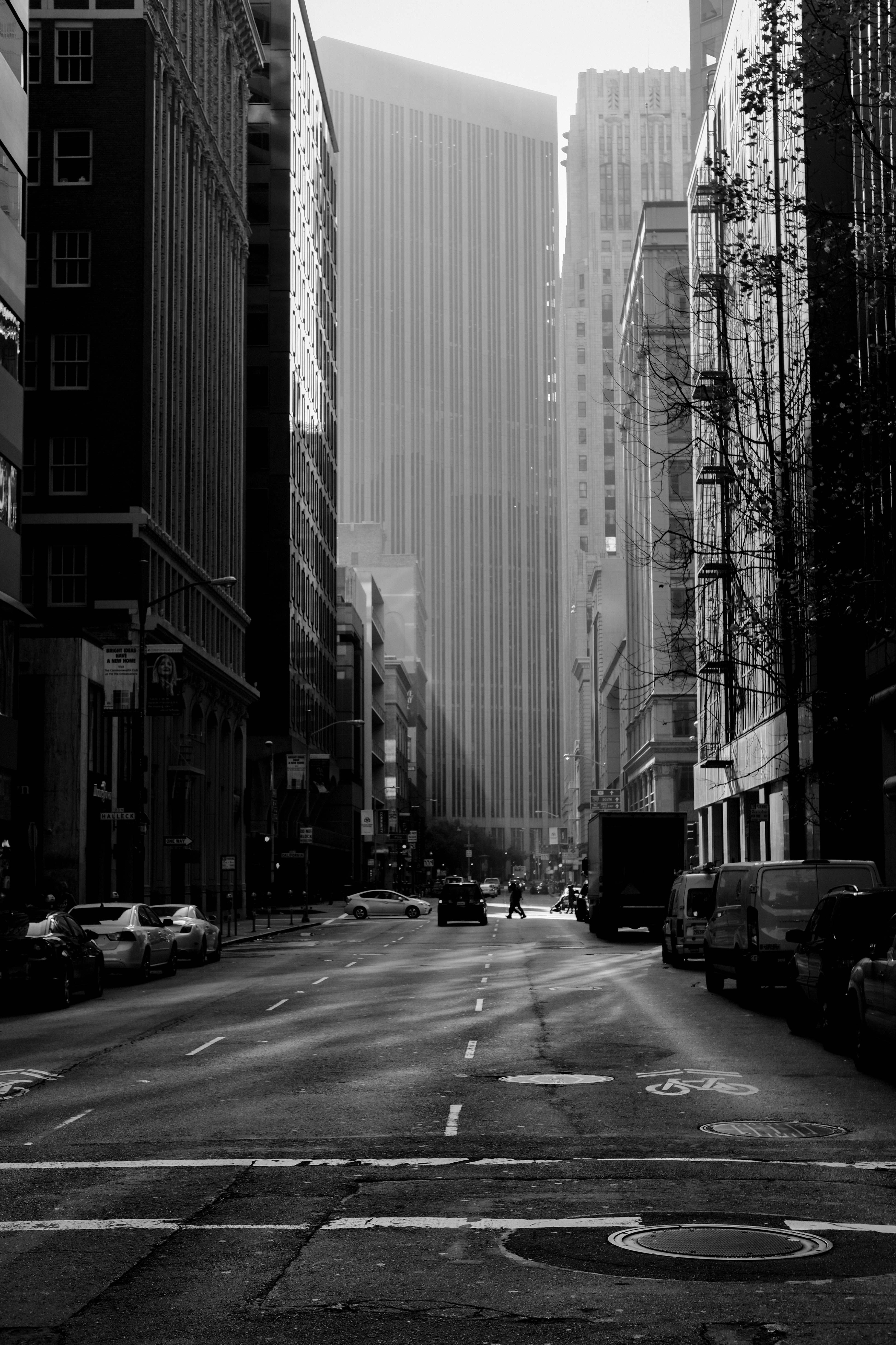 greyscale photo of road with vehicles in between buildings