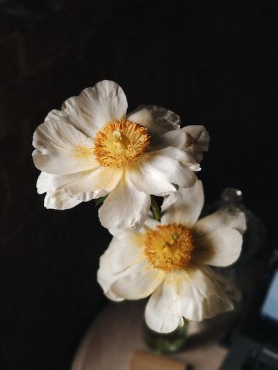 3926. Virágok