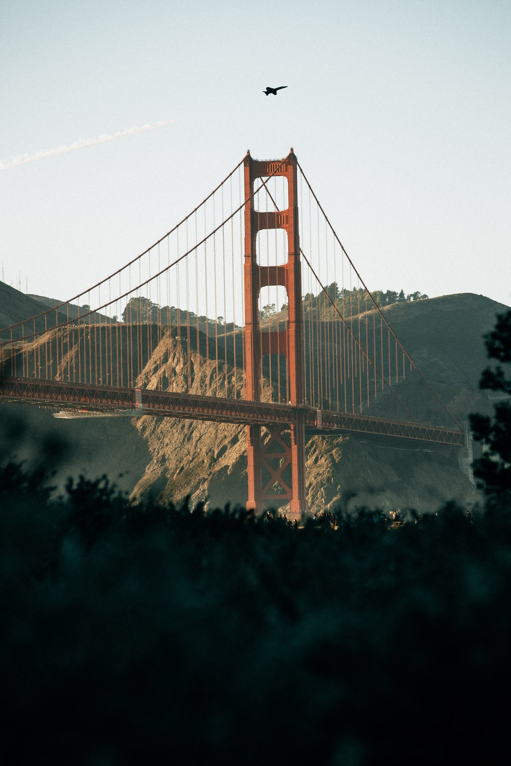 landscape photography of bridge near hills