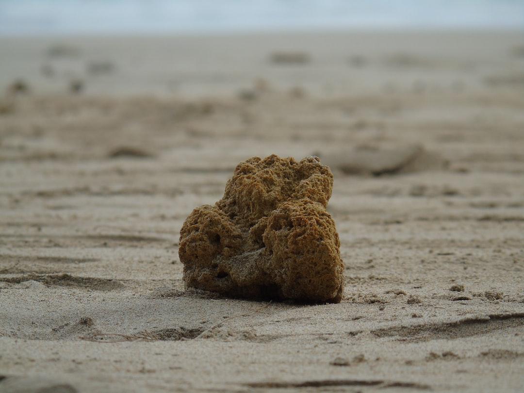 A rock or coral on a grey sandy beach in Ko Lanta, Thailand