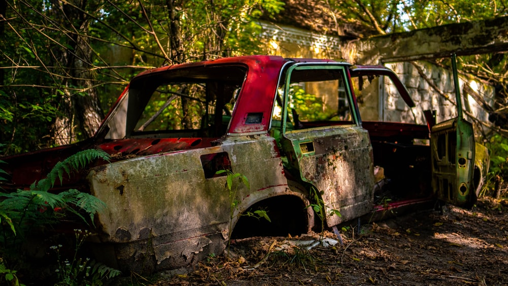 abandoned red and green sedan body shell in forest during daytime
