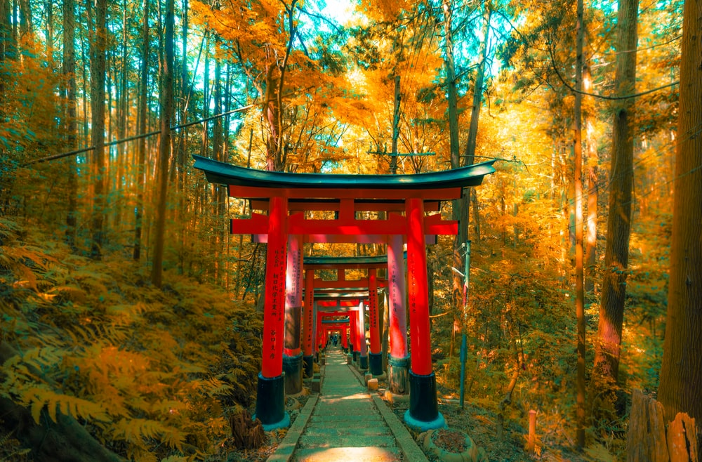 Shinto Gate during daytime