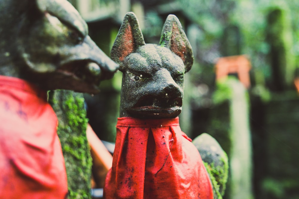 focus photography of black dog figurines