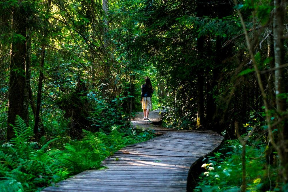 woman standing in brown pathway between trees