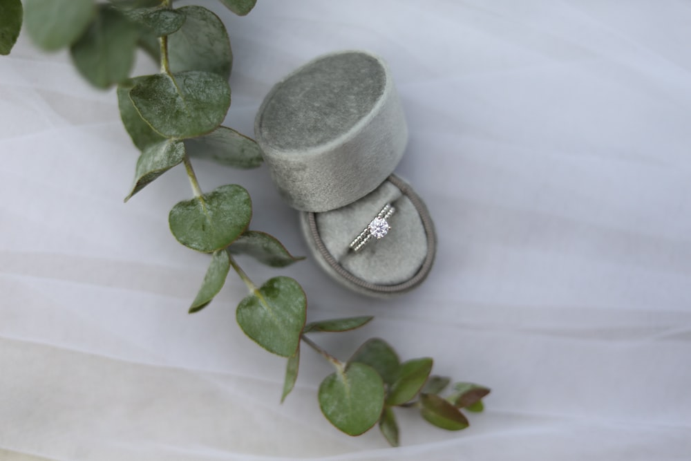 gold and diamond ring on case beside crawling plant