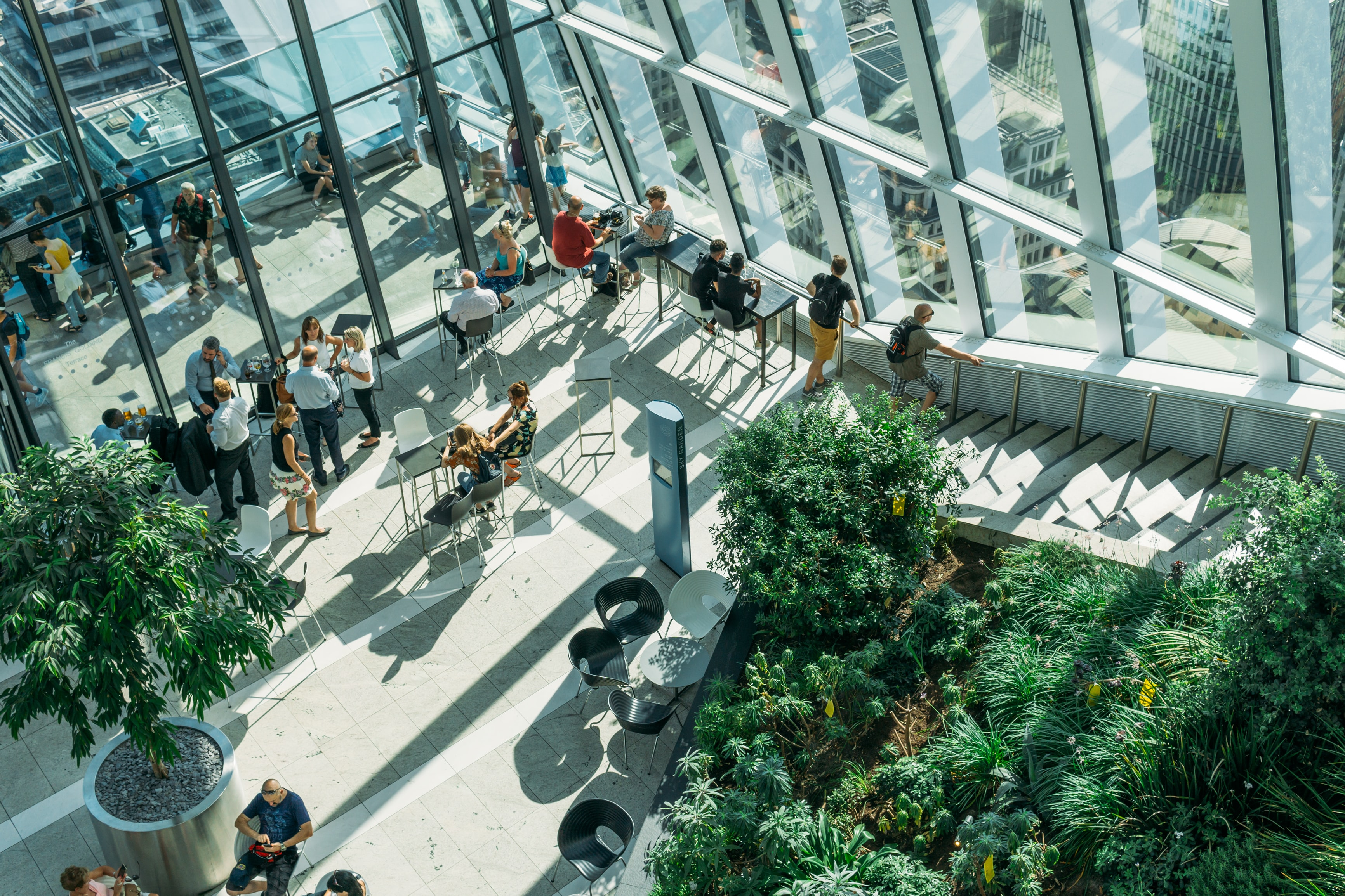 people gather in building beside green-leafed plants