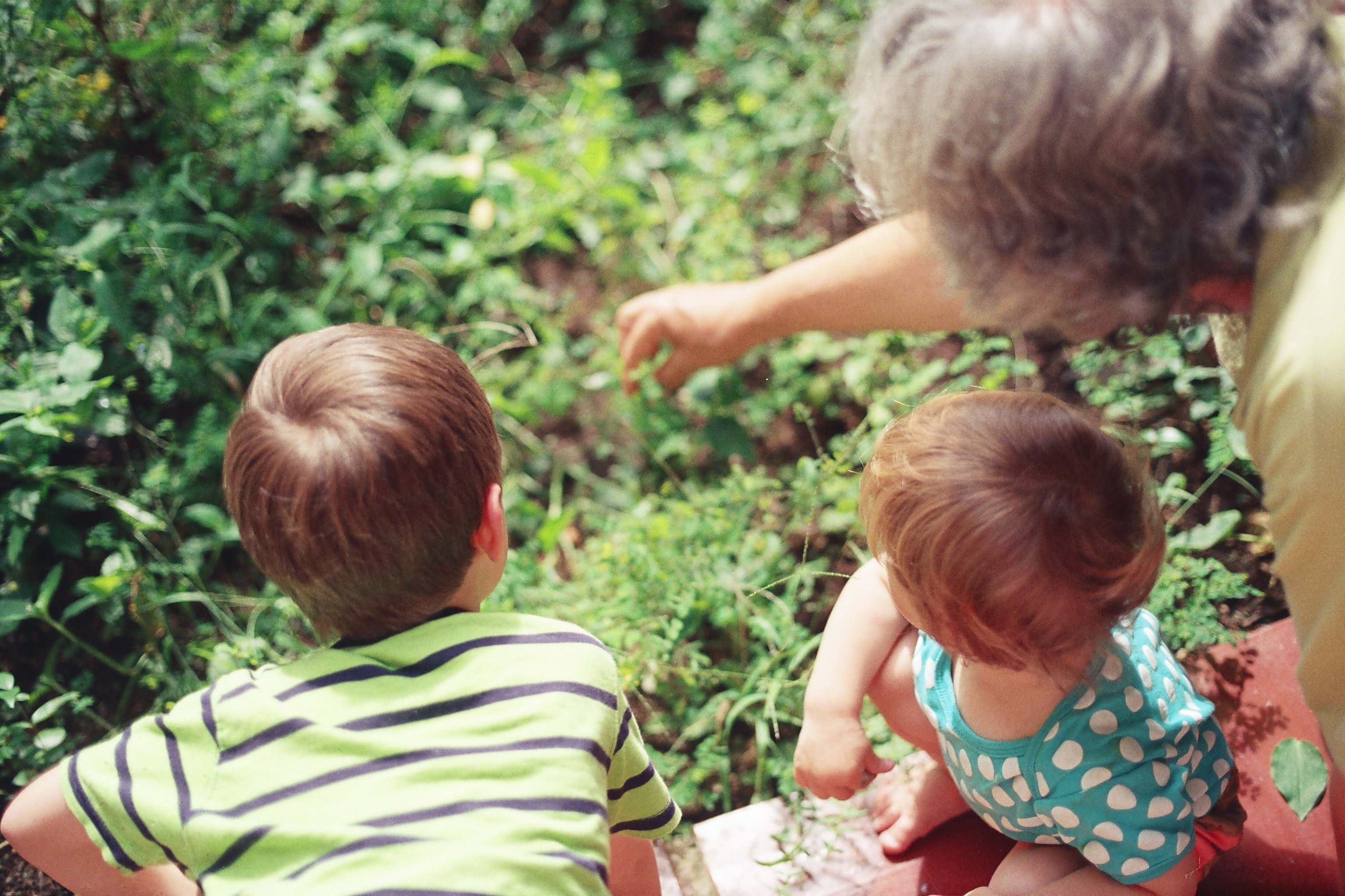 woman playing with two children in the woods