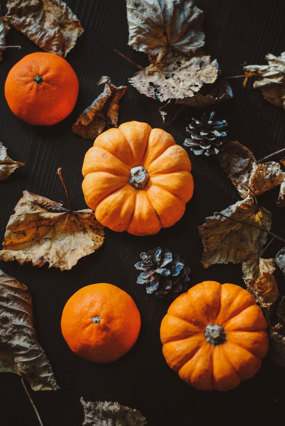 orange pumpkins on black surface