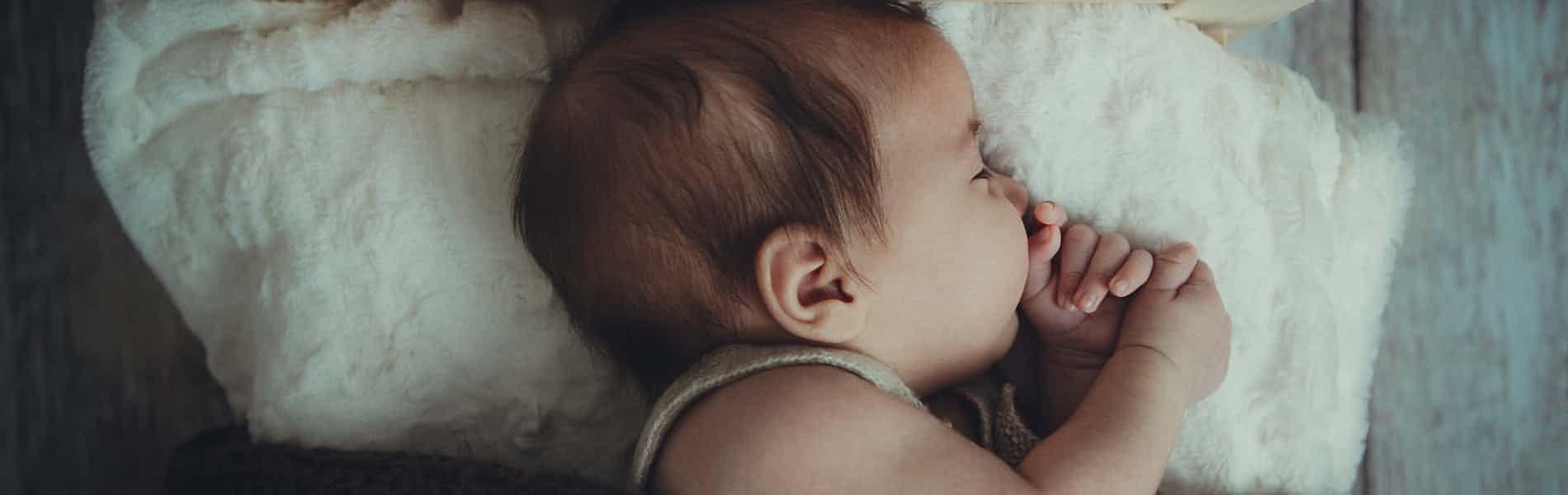 שינה של תינוקות ופעוטות - הגוף והנפש: מדריך מעשי