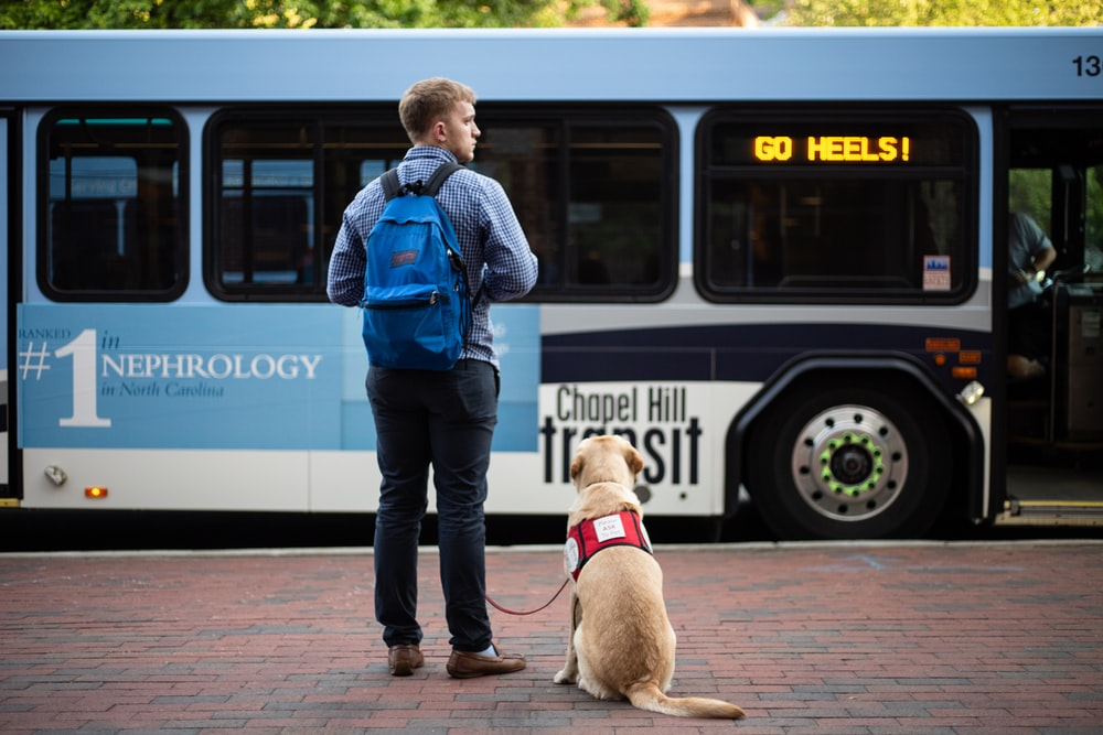 man beside dog in front of bus