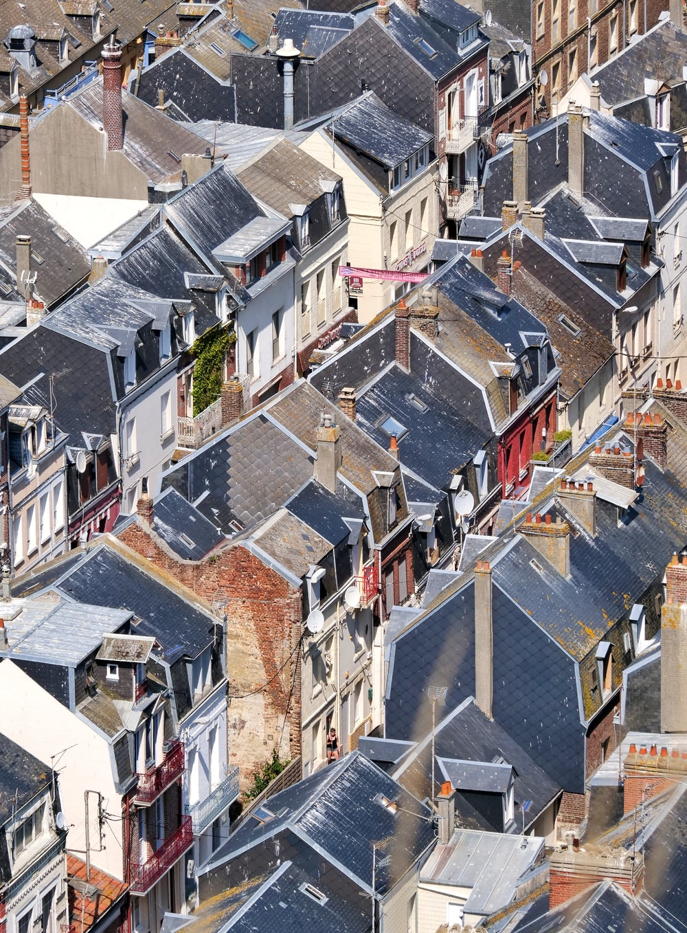 aerial photography of black-roofed houses