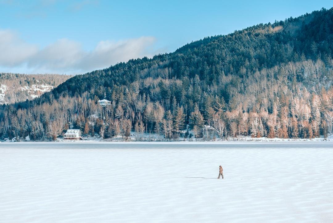 Vast fields of snow