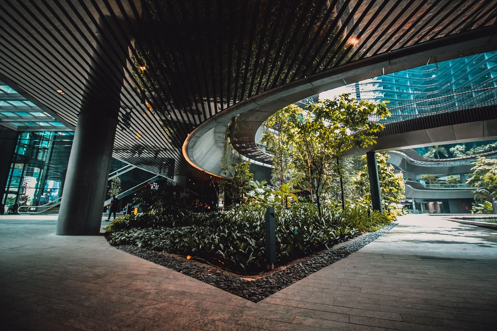trees under building inside
