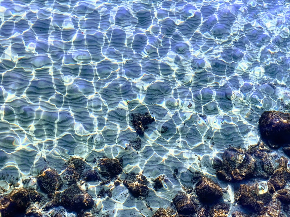 aerial photography of crystal clear water with rocks during daytime
